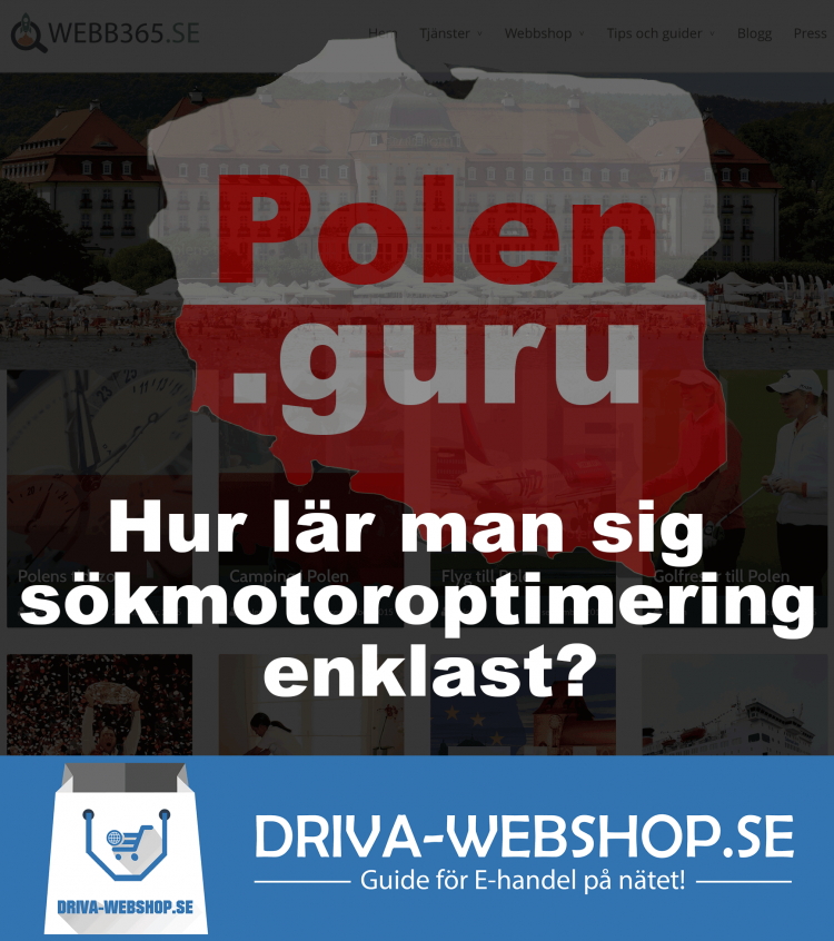 Polen projekt